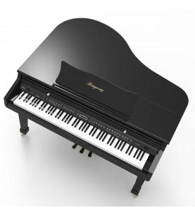 Música Asensio Piano digital Ringway GRAN COLA GDP6320
