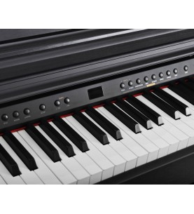 Música Asensio Piano digital Artesia DP3