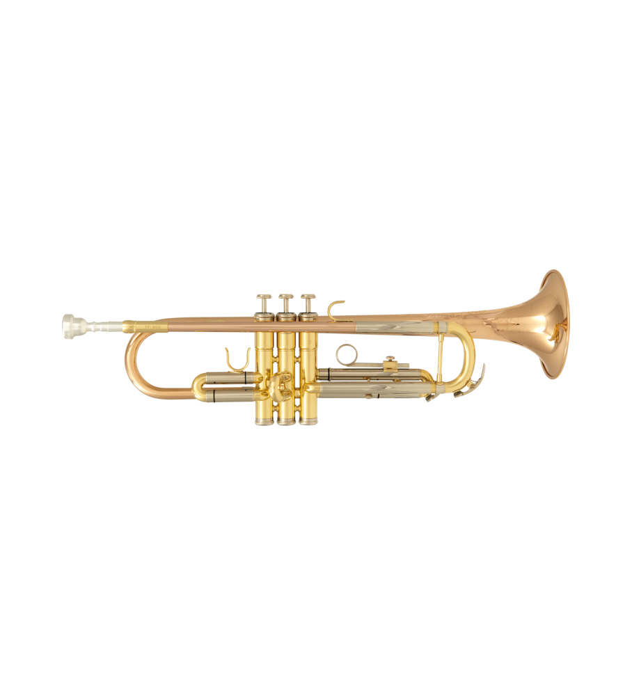 Trompeta Sib SML TP-600 lacada
