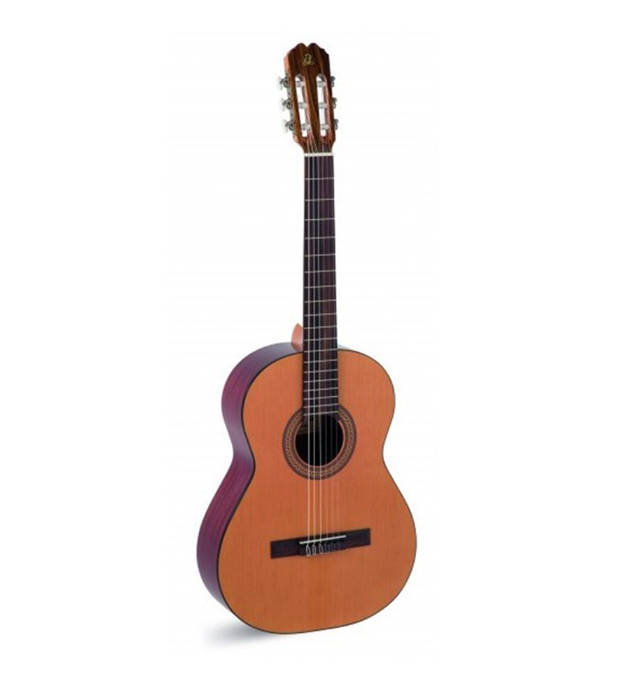 Música Asensio Guitarra Admira Paloma
